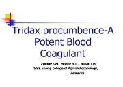 Tridax Procumbence A Paper Presentation Powerpoint Presentation