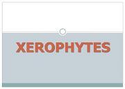 Xerophytes Powerpoint Presentation