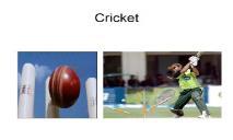 Cricket Overview PowerPoint Presentation
