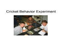 Cricket Experiment PowerPoint Presentation