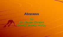 Abscess PowerPoint Presentation