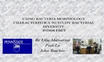 Bacteria Morphology PowerPoint Presentation