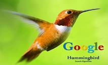 Google Hummingbird Search Algorithm PowerPoint Presentation