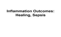 Inflammation and Healing PowerPoint Presentation
