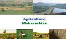 Agriculture Profile Maharashtra PowerPoint Presentation