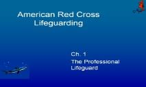 The Professional Lifeguard PowerPoint Presentation
