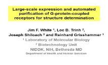 Acknowledgement Structural Bioinformatics Laboratory PowerPoint Presentation
