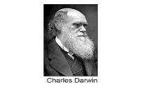 Charles Darwin Brigham Young University PowerPoint Presentation