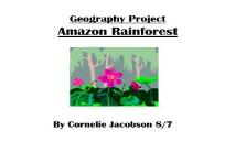 Amazon Rainforest PowerPoint Presentation