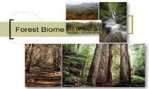 Forest Biome PowerPoint Presentation
