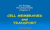 Cell Membranes PowerPoint Presentation