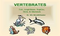 Vertebrates Animals PowerPoint Presentation