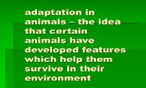 Adaptation in animals (the idea that certain animals) PowerPoint Presentation