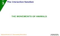 The movements of animals PowerPoint Presentation
