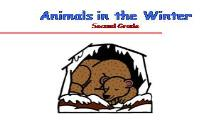 Animals in the Winter Second Grade PowerPoint Presentation