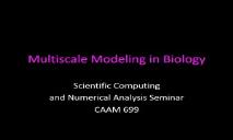 Multiscale Modeling in Biology PowerPoint Presentation