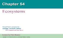 Ecosystems Biology Junction PowerPoint Presentation