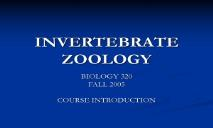 INVERTEBRATE ZOOLOGY PowerPoint Presentation