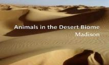 Animals in the Desert Biome PowerPoint Presentation