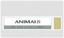 Animals - SchoolWorld PowerPoint Presentation