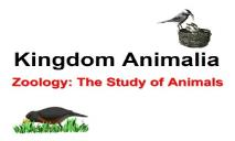 What is Zoology PowerPoint Presentation