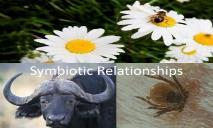 Symbiotic Relationships PowerPoint Presentation