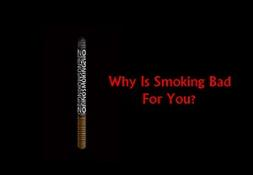 Why Is Smoking Bad For You Powerpoint Presentation