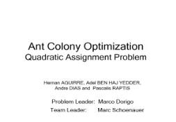 Ant Colony Optimization Information PowerPoint Presentation