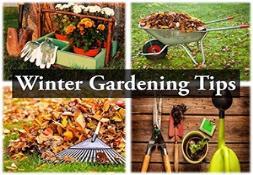 Winter Gardening Tips PowerPoint Presentation