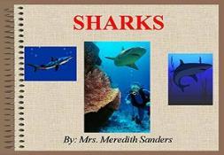 Sharks Powerpoint Presentation