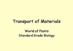 Transport In Plants Powerpoint Presentation