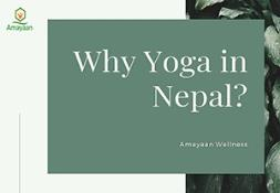 Meditation and yoga in Nepal. PowerPoint Presentation