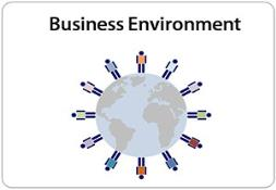 Business Environment PowerPoint Presentation