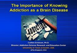 Addiction as a Brain Disease PowerPoint Presentation