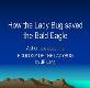 How the Lady Bug saved the Bald Eagle Powerpoint Presentation