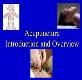 Acupuncture Introduction and Overview Powerpoint Presentation