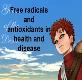 Free radicals and antioxidants in health and disease Powerpoint Presentation