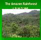 The Amazon Rainforest University of North Texas Powerpoint Presentation