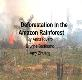 About Deforestation In the Amazon Rainforest Powerpoint Presentation