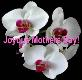 Joyous Mothers Day Powerpoint Presentation