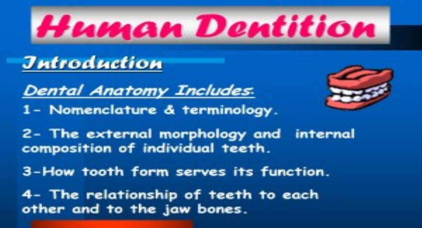 Free Download Dental Anatomy Introduction and Nomenclature ...